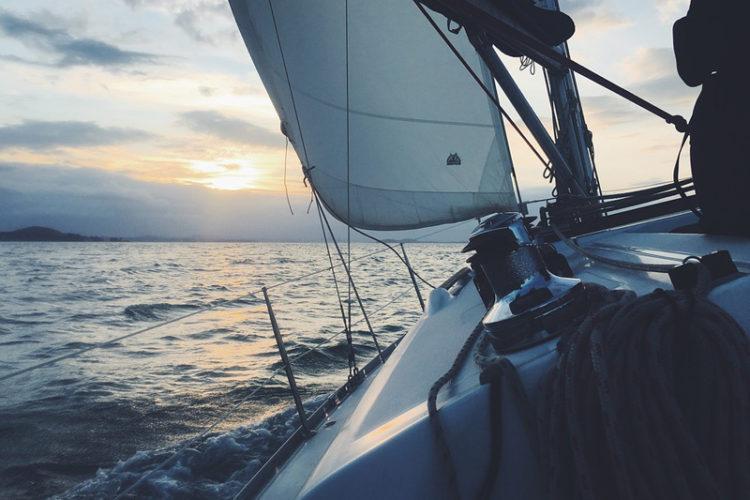 Navigating Business and Life