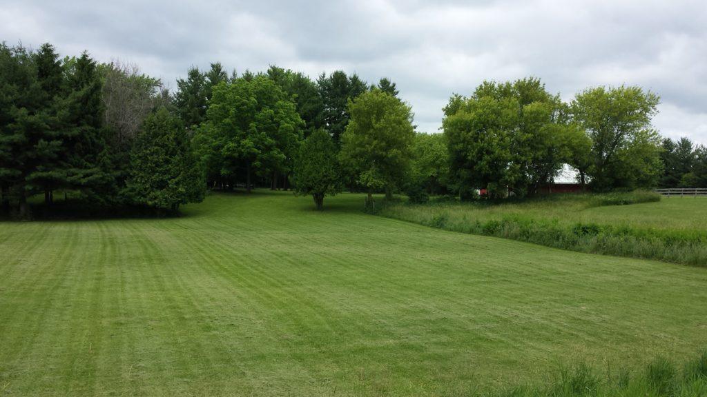 Huge Yard